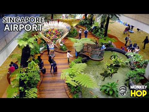 Air Travel Done Right   Singapore Worlds Best Air Base   Monkey Hop