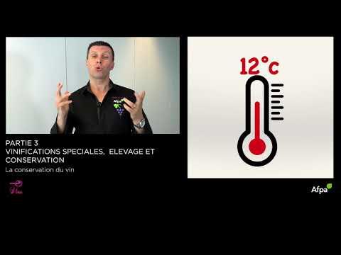 UA3 - Vidéo 12 - La conservation du vin