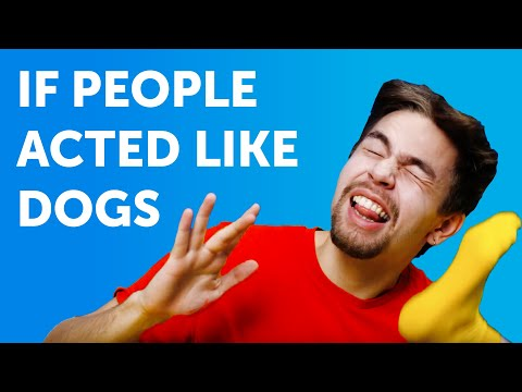 IF PEOPLE ACTED LIKE DOGS. How weird would it be? || Comedy by 5-Minute FUN