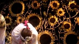 финал  спектакля  свадьба в   малиновке