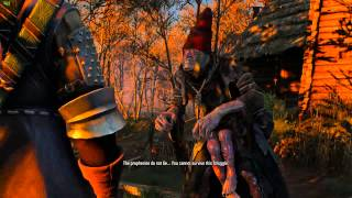 The Witcher 3 - Crones Ending