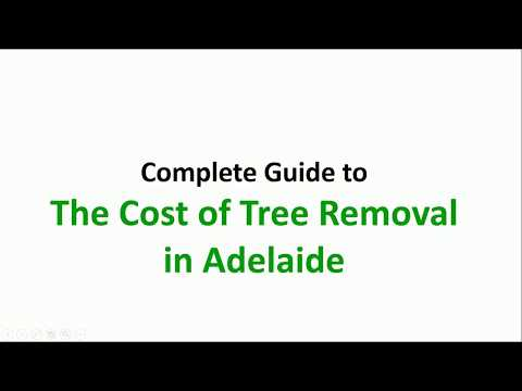 Tree Lopping Prices Adelaide
