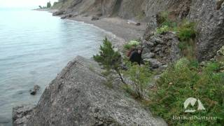 Trekking on the south-western shore of Lake Baikal with BaikalNature