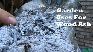 Garden tips - Wood Ash 101