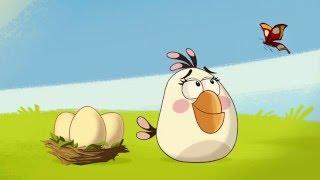Злые птички - Энгри Бердс - Эффект бабочки (S1E43) || Angry Birds Toons