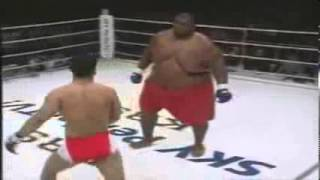 Gambar cover petinju vs sumo