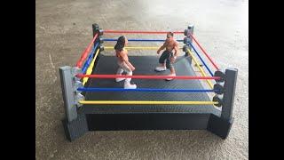Wrestling Ring  -14 July 2017