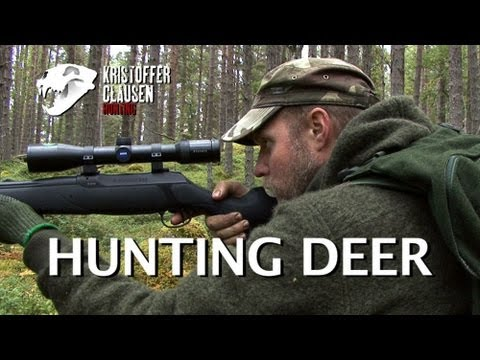 Hunting Deer. Filmed And Hunted By Kristoffer Clausen