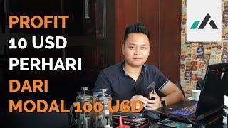 PROFIT 10 USD PERHARI  DARI MODAL 100 USD⁉️ MP3