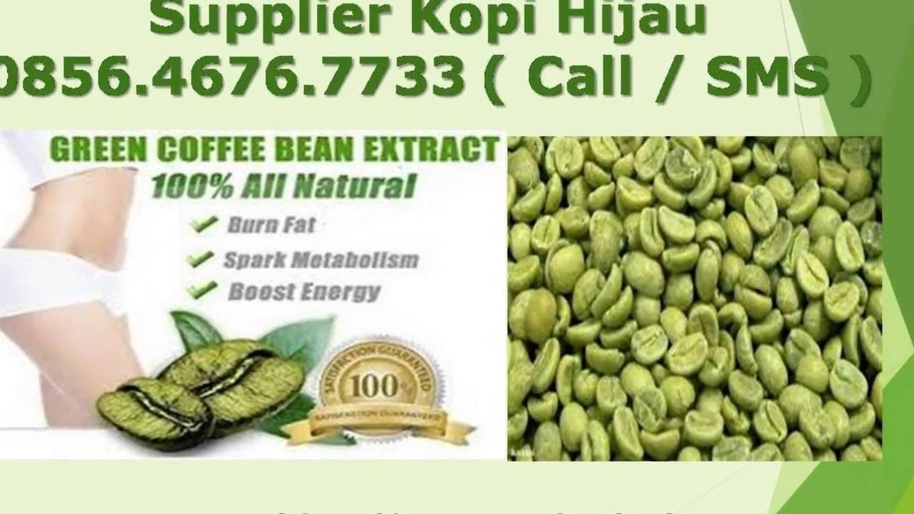 085646767733 Green Coffee Pelangsing Kopi Hijau Pembakar Lemak 1000 Bean