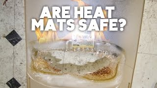 Are Heat Mats Safe For Reptiles? | FAQ FRIDAYS