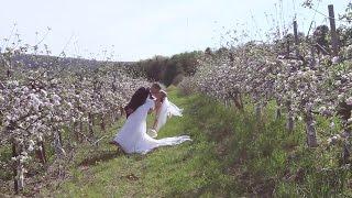 Shannon & Tim's Wedding (2015) (Highlight Film)