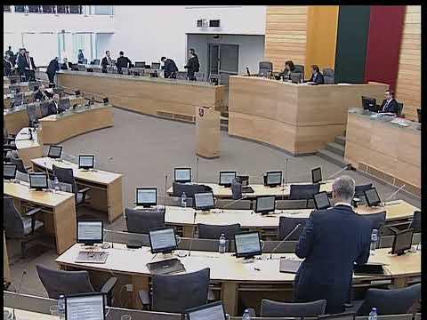 2019-05-30 Seimo rytinis posėdis Nr. 291