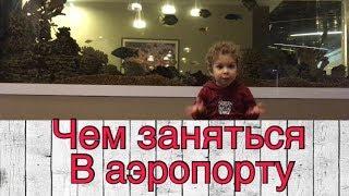 видео Бизнес и VIP залы в аэропорту Шереметьево