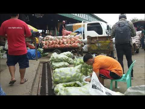 La Trinidad Vegetable Trading Post | La Trinidad, Benguet, Philippines | October 2018