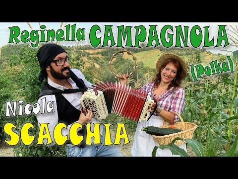 REGINELLA CAMPAGNOLA (polka) NICOLA SCACCHIA e la TECNICA TRADIZIONALE DELL'ORGANETTO dubbotte