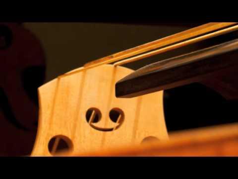 Un Viaje Sonoro a través del Contrabajo trailer