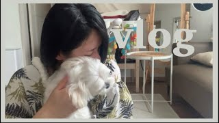 GOODBYE IRENE 😭 | Cleaning Out the Fridge | 37 Weeks Pregnant | Daily Vlog #31