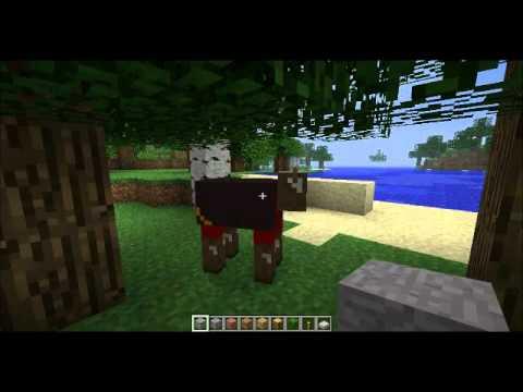 Minecraft Forum Contest - TF2 Skins!