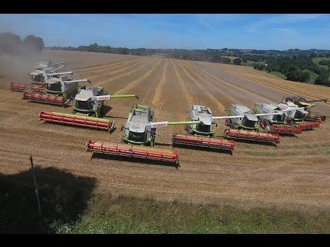 XXXL Harvest = 11 Lexion + CR = 80m in France