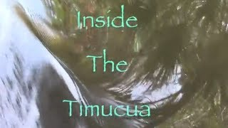 "Indian documentary ""Inside the Timucua"""