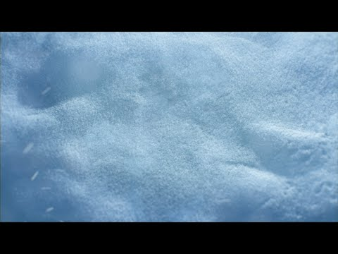 Temple Run 2: Frozen Shadows - Teaser