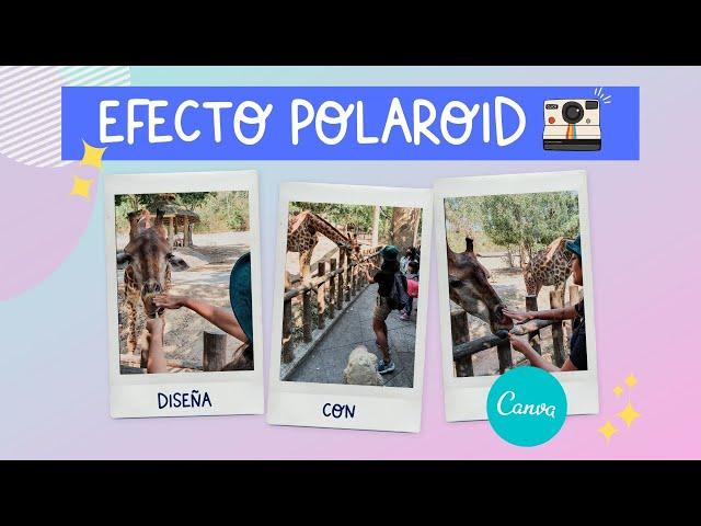 IDEAS CREATIVAS - Efecto Polaroid Realista hecho en Canva (Con recursos Gratuitos)