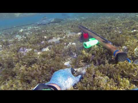 Guam Spearfishing GU-Descendants