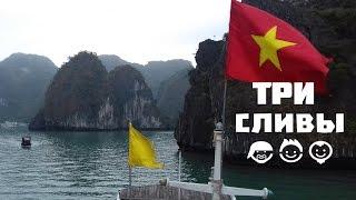 Три Сливы - Экскурсия в Ха Лонг: каякинг, международная пьянка и уроки русского мата