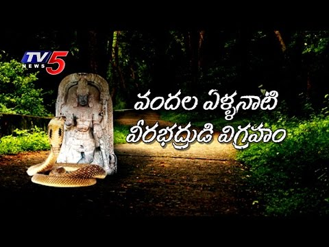 Real Story | Veerabhadra Swamy Idol Protected by Snake | Khammam | TV5 News