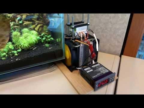 Custom Fluval Edge with LED lights and TEC Cooler - Aquarium Cooler - Peltier