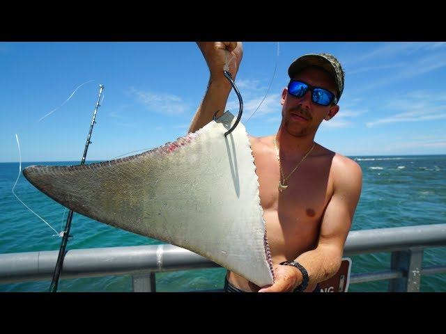 Dropping MASSIVE Baits for JETTY GIANTS