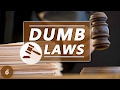 DUMB LAWS IN THE USA 6