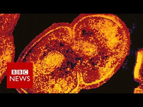 Ultra-tough antibiotic to fight superbugs - BBC News