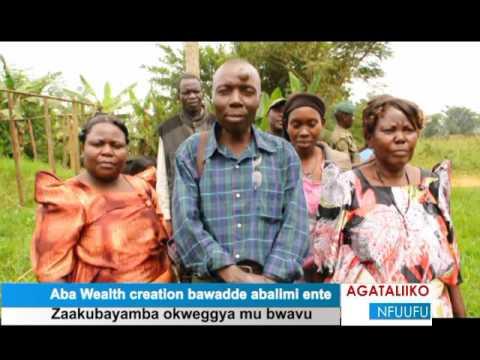 Aba Wealth creation bawadde abalimi ente