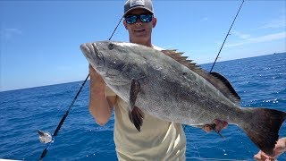 The KING of the REEF- Catch Clean Cook- Black Grouper (Florida Keys Fishing)
