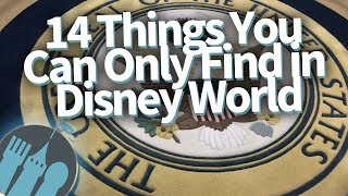 14 Things You Can ONLY Find in Disney World!