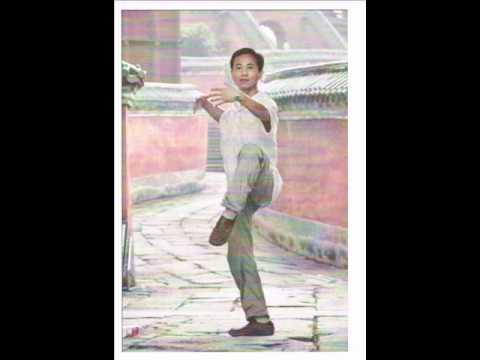 Lift Qi Up & Pour Qi Down with Teacher Tao Qingyu