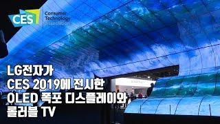 [CES2019] LG 기술, 이정도? 올레드 폭포 & 롤러블 TV