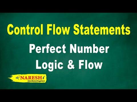 Perfect Number Logic & Flow | Control Flow Structures Tutorial | Mr. Srinivas