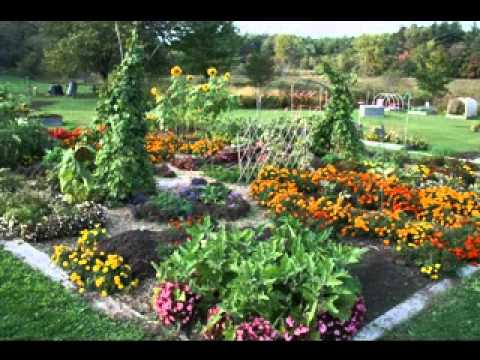 Ideas For School Gardens Model School Garden Ideas  Youtube