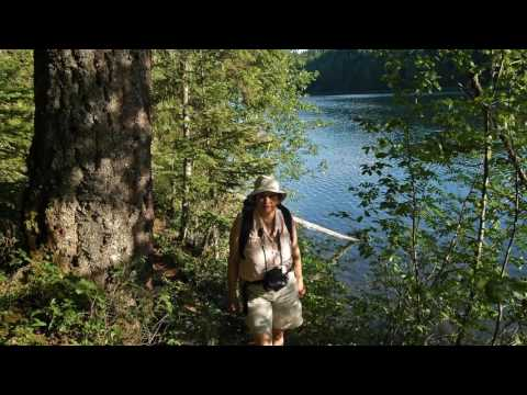 Clearwater Lake Campground Wells Gray Park British Columbia