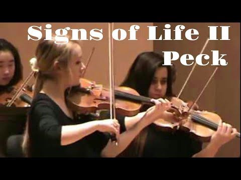 MIC Academy Orchestra - Maestro Vamos, Serena Harnack concertmaster