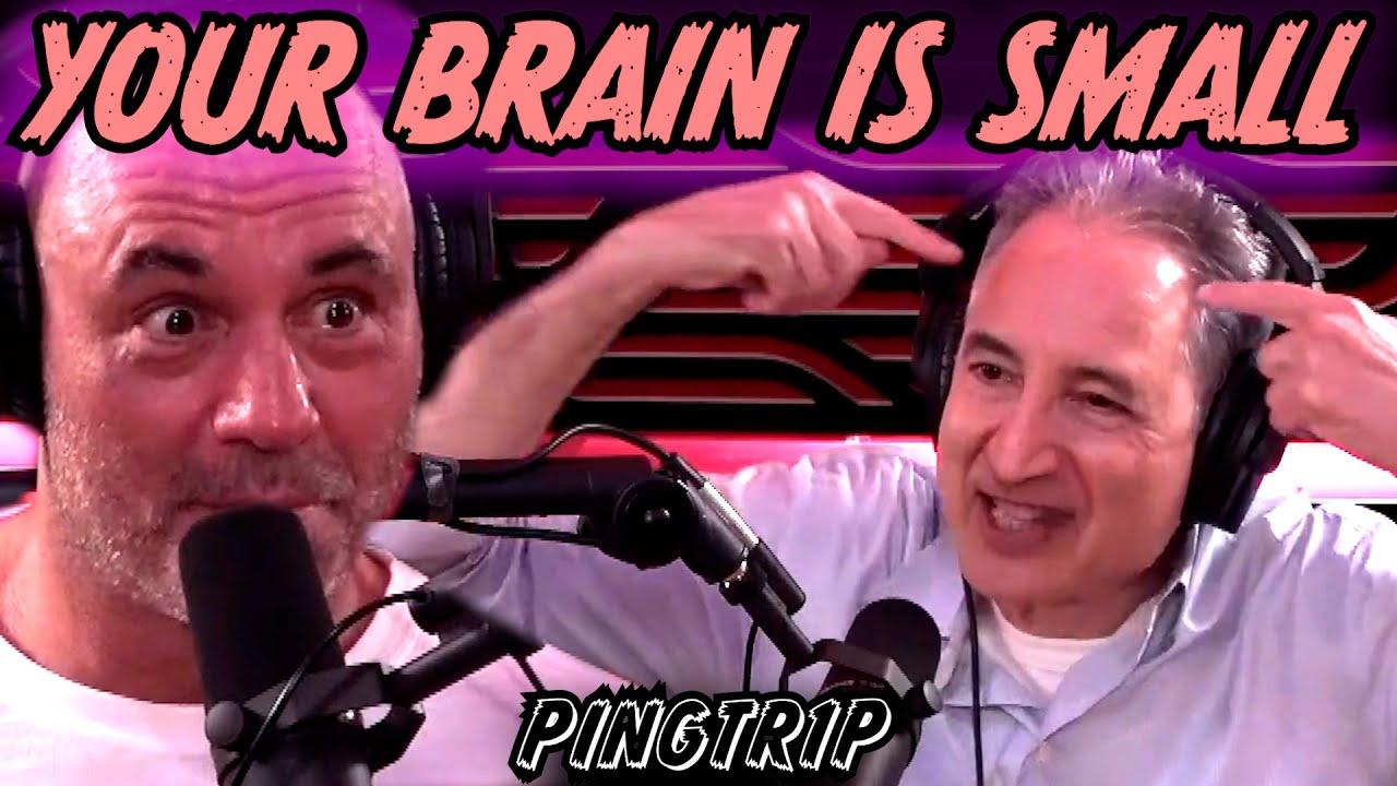 Brian Greene Tells Joe Rogan To SHUT UP