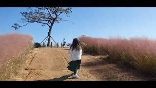 아이와 가볼만한곳 안성팜랜드 핑크뮬리 동물먹이주기 놀이…
