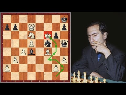"Wow! Mikhail Tal's King Hunt Ended ""Tragically"""