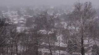 Snow Jan 2010 007.mov