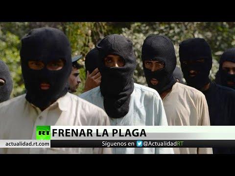 El Estado Islámico podría infiltrarse en América Latina
