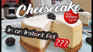 How to Make a Cheesecake in an Instant Pot // Tiny Kitchen Big Taste
