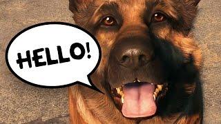 FALLOUT 4 - TALKING DOG